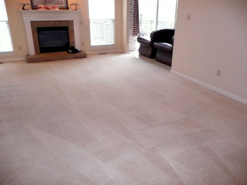 Carpet Cleaning Cleveland Ohio Images Killeen